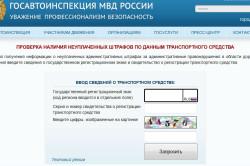 Проверка штрафов на сайте госавтоинспеции
